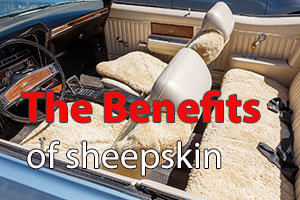 The Benefits of Sheepskin
