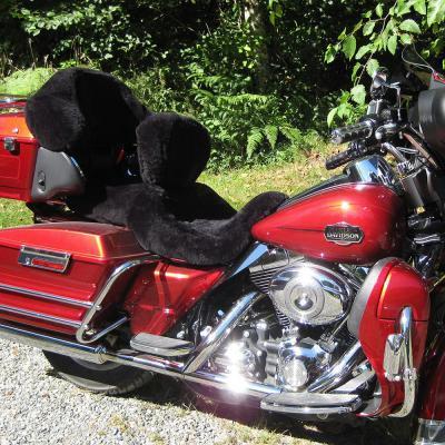 Sheepskin Motorcycle Seat Covers