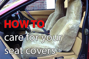 How to care for your sheepskin seat covers